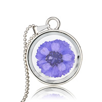 Floating Charm Necklace, Zinc Alloy, with Dried Flower & iron chain & Glass, Flat Round, platinum color plated, ball chain & for woman, lead & cadmium free, 25x25mm, Length:Approx 17.5 Inch, Sold By Strand